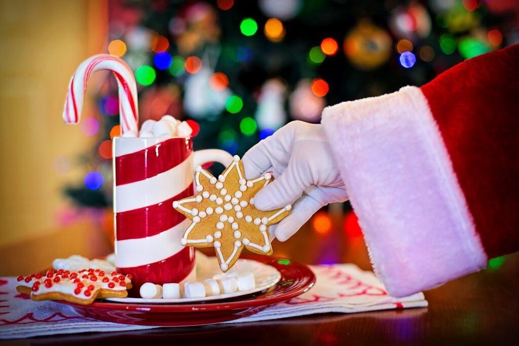 santa claus, cocoa, christmas cookie