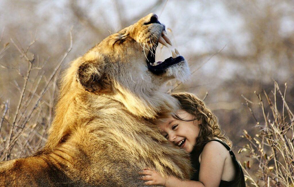 lion, roar, africa